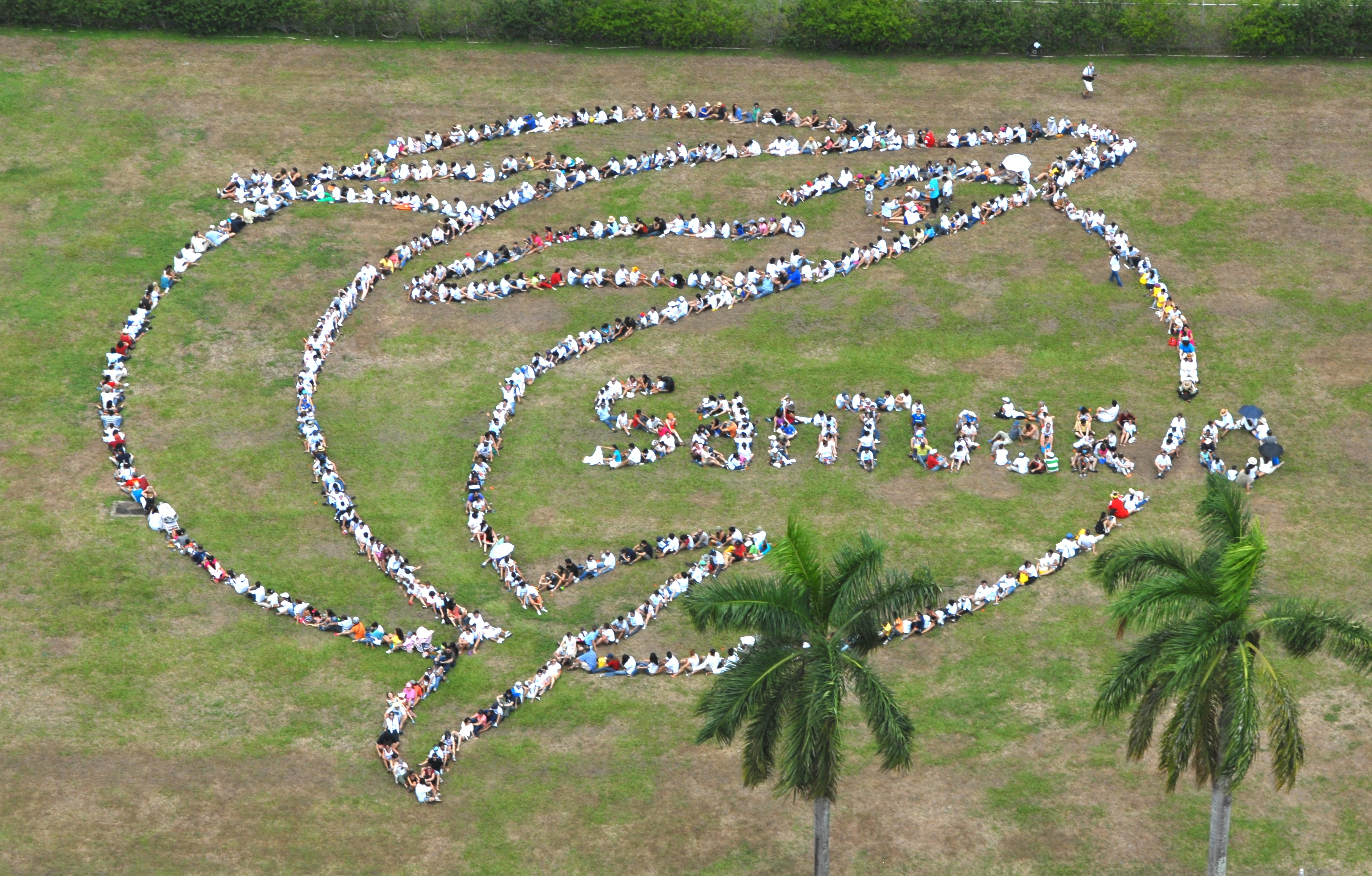 Creative action to promote Whale Sanctuaries in the South Pacific. Photo by Spectral Q.